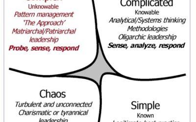 Wicked Problems in Governance: Bestuur, Beleid en Uitvoering in balans?